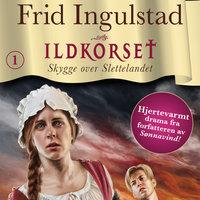 Skygge over Slettelandet - Frid Ingulstad