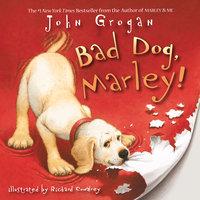 Bad Dog, Marley! - John Grogan