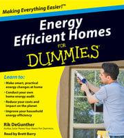 Energy Efficient Homes for Dummies - Rik DeGunther