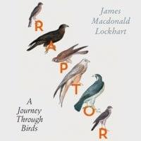 Raptor - James Macdonald Lockhart