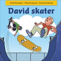 David skater - Arild Rossebø