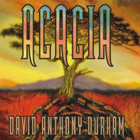 Acacia - David Anthony Durham