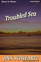 Troubled Sea - Jinx Schwartz