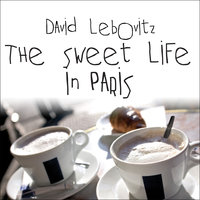 The Sweet Life in Paris: Delicious Adventures in the World's Most Glorious – and Perplexing – City - David Lebovitz
