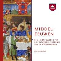 Middeleeuwen - Herman Pleij