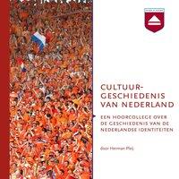 Cultuurgeschiedenis van Nederland - Herman Pleij