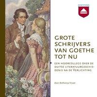 Grote schrijvers van Goethe tot nu - Anthonya Visser