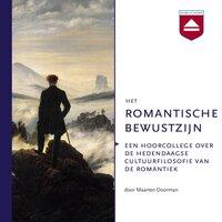 Het romantische bewustzijn - Maarten Doorman