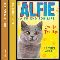 Alfie Cat In Trouble - Rachel Wells