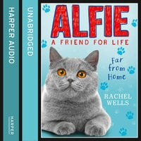 Alfie Far From Home - Rachel Wells