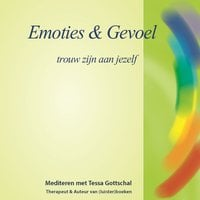 Emoties en Gevoel - Tessa Gottschal