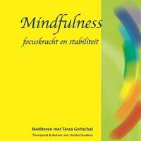 Mindfulness - Tessa Gottschal