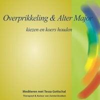Overprikkeling en Alter Major - Tessa Gottschal