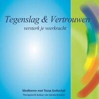Tegenslag en Vertrouwen - Tessa Gottschal
