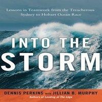 Into the Storm: Lessons in Teamwork from the Treacherous Sydney to Hobart Ocean Race - Jillian B. Murphy, Dennis N.T. Perkins