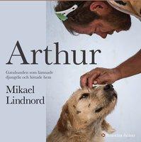 Arthur : Gatuhunden som lämnade djungeln och hittade hem - Val Hudson, Mikael Lindnord