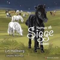 Natten då Sigge föddes - Lin Hallberg