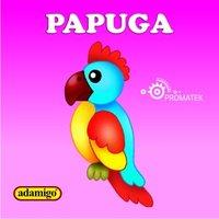 Papuga - Magdalena Kuczyńska