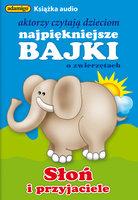Słoń i przyjaciele - Magdalena Kuczyńska