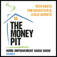 The Money Pit, Vol. 6 - Tom Kraeutler,Leslie Segrete