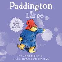 Paddington At Large - Michael Bond