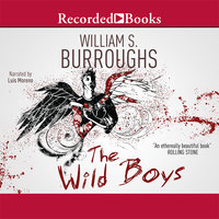 The Wild Boys - William S. Burroughs