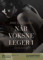 Når voksne leger - 13 erotiske fortællinger - Anne Rosengård