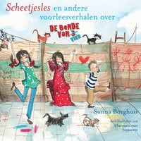 Scheetjesles - Sunna Borghuis