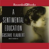 A Sentimental Education - Gustave Flaubert