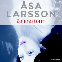 Zonnestorm - Åsa Larsson