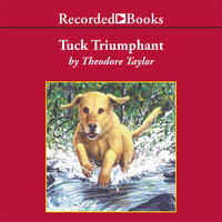 Tuck Triumphant - Theodore Taylor