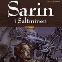 Sarin i Saltminen - Benni Bødker