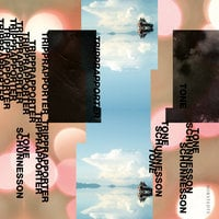 Tripprapporter - Tone Schunnesson