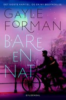 Bare en nat - Gayle Forman
