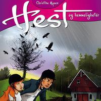 Mysterier - Christine Mysen