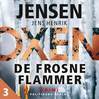 De frosne flammer - Jens Henrik Jensen