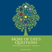 More of Life's Questions - Spiritual Development Vol 3 - Elsabe Smit