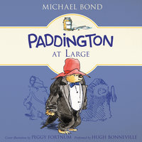 Paddington at Large - Michael Bond