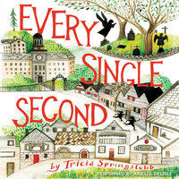 Every Single Second - Tricia Springstubb
