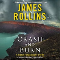 Crash and Burn - James Rollins