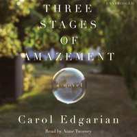 Three Stages of Amazement - Carol Edgarian