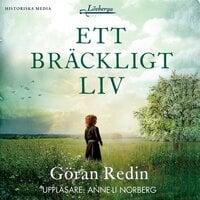 Ett bräckligt liv - Göran Redin