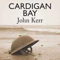 Cardigan Bay - John Kerr