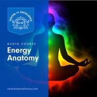 Energy Anatomy - Various Authors