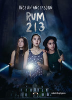 Rum 213 - Ingelin Angerborn