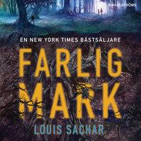 Farlig mark - Louis Sachar