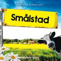 Smålstad - S01E01 - Karin Janson