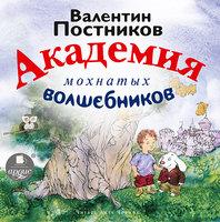 Академия мохнатых волшебников - Валентин Постников