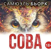 Сова - Самюэль Бьорк