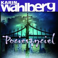 Pocieszyciel - Karin Wahlberg